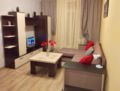 The optimal apartment for people del -  - Saint Petersburg - Russia Hotels Information